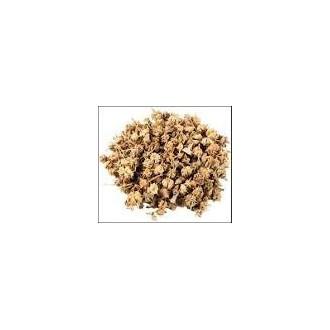 Gokshura Powder - 50 gm